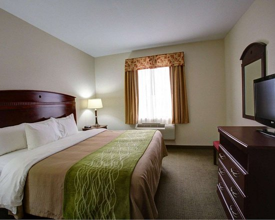 Rockdale, TX: Guest room with flat-screen television