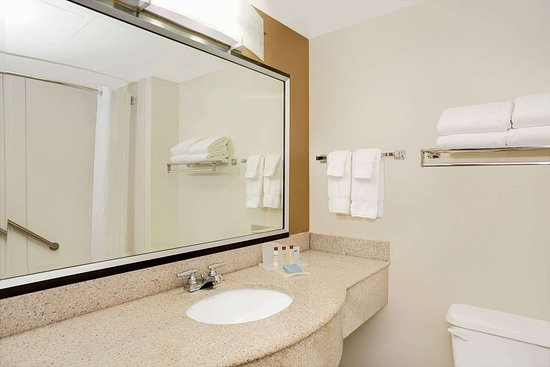Wingate by Wyndham Raleigh Durham / Airport : Bathroom