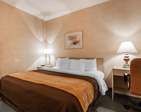 Tulalip, WA: Guest room with one bed