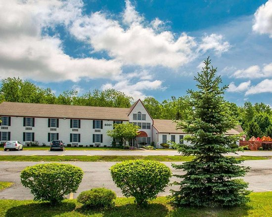 Lakeville, NY: Beautiful flowers and shrubs surrounding the hotel