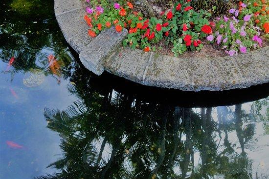 帕拉威利公园照片