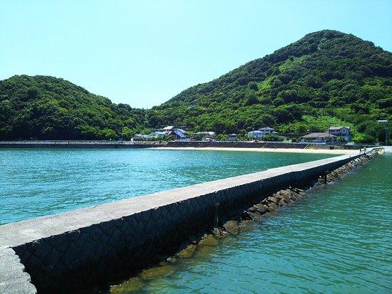 Asakuchi, Nhật Bản: DSC_2423_large.jpg