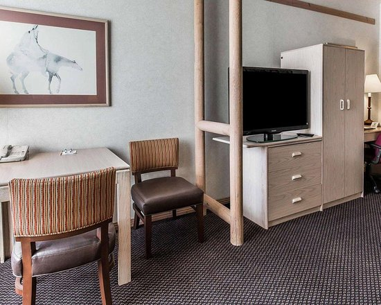 Quality Suites: Guest room with sitting area