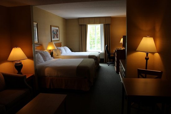 Holiday Inn Express Hotel & Suites Warrenton: Guest room