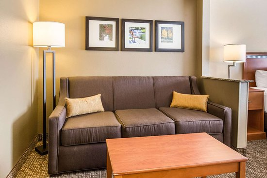 Comfort Suites Bloomington Normal: Guest room with sofa sleeper