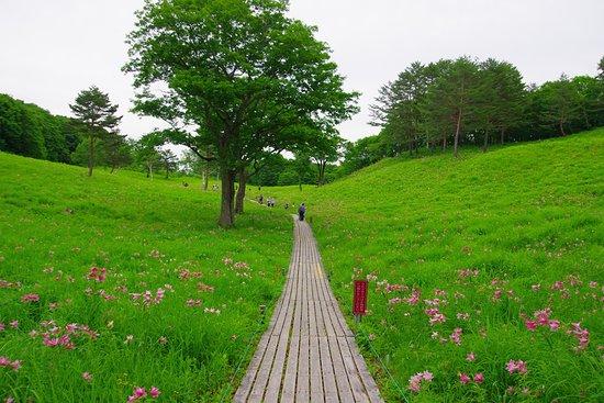 Minamiaizu-machi, Ιαπωνία: 園内の風景