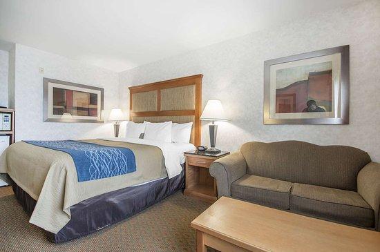 كومفورت إن آند سويتس: Guest room with sofa sleeper