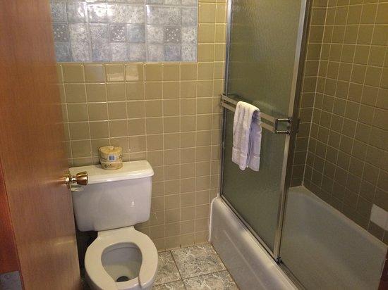 Thief River Falls, MN: Bathroom