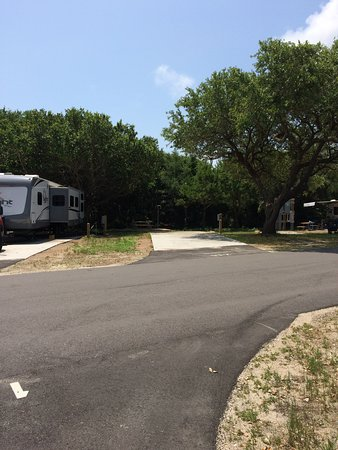 Campsite Across From Us Look Behind Tree For Utility Boxes Picture Of Huntington Beach State Park Murrells Inlet Tripadvisor