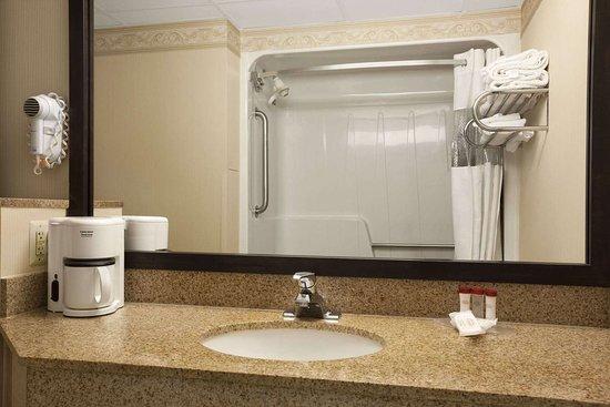Levittown, Пенсильвания: Bathroom