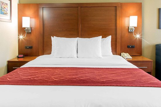 Comfort Inn & Suites San Francisco  Airport North: King suite