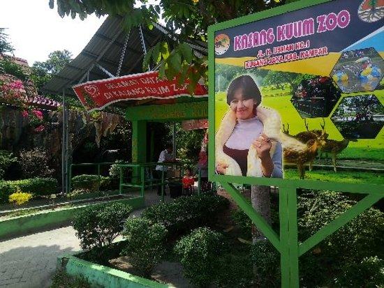 Kebun binatang kasang kulim pekanbaru