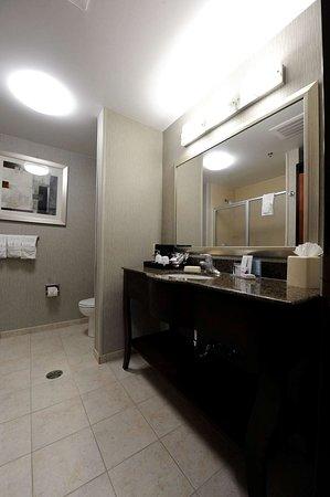 Hampton Inn and Suites Craig: Guest room
