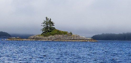 Nootka Island, Kanada: 20180620_172715_large.jpg