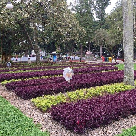 Taman Di Perkantoran Gubernur