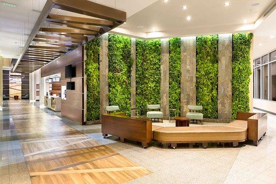 Hilton Garden Inn San Jose la Sabana $139 ($̶1̶6̶2̶) - UPDATED 2018 ...
