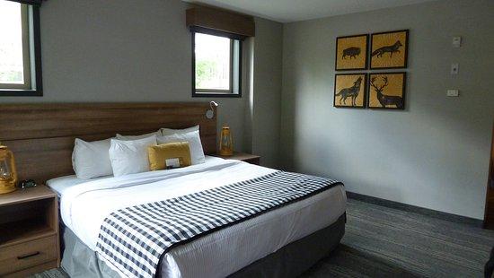 云杉树林酒店照片