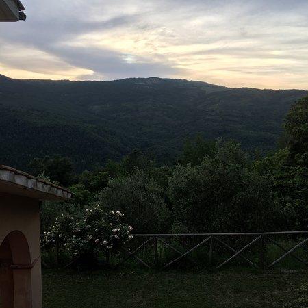 Selva di Santa Fiora, Italien: Immerso nel verde