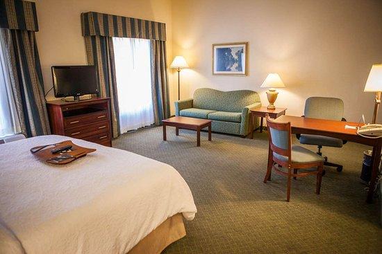 Hampton Inn & Suites Springfield - Southwest: Guest room