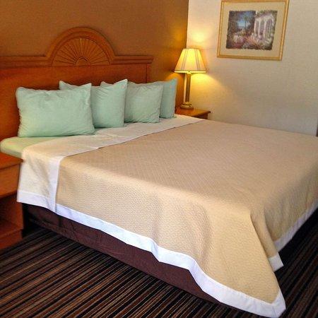 DeRidder, LA: One King Bed
