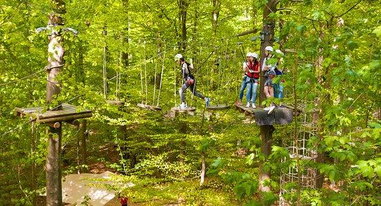 144d05e7e39eb9 Kletterwald Hamburg  Eine völlig neue Perspektive auf den Wald aus einer  Höhe von 2 bis