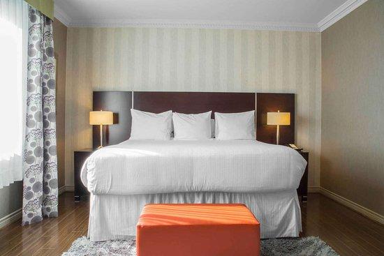 Quality Suites: King suite