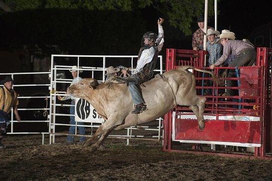 Cherokee, IA: Rodeo