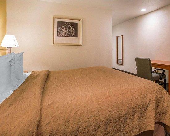 كواليتي إن سانتا كروز: Guest room with king bed