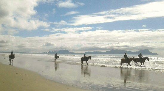 Whangarei, Νέα Ζηλανδία: Beach bliss
