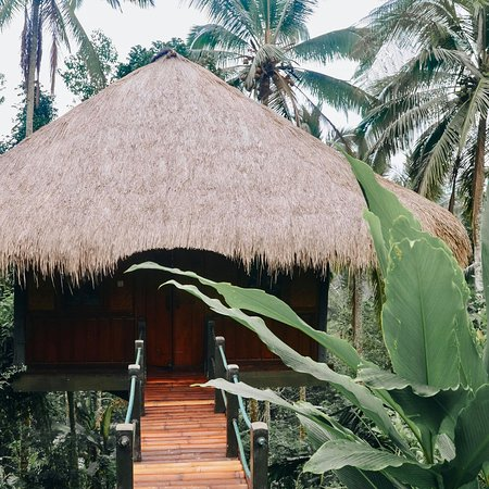 Sarinbuana Eco Lodge Bild