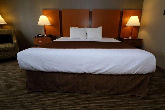 Best Western La Plata Inn: King Room