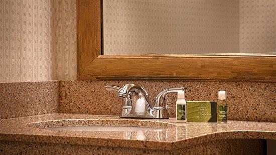 Allen Park, MI: Guest Bathroom
