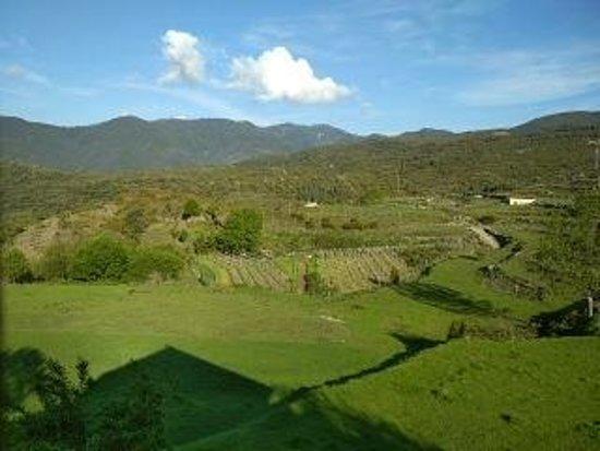 Bilde fra Casa Marina