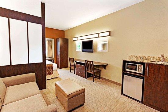 Microtel Inn & Suites by Wyndham Woodstock/Atlanta North: Suite