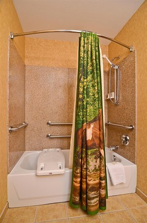 Best Western Plus Kelly Inn & Suites: Mobility Accessible Guest Bathroom