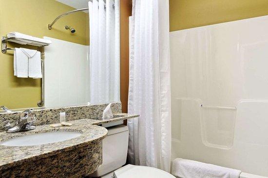 Microtel Inn & Suites by Wyndham Marietta: Bathroom