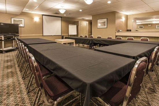 Quality Inn Medicine Hat: Meeting room