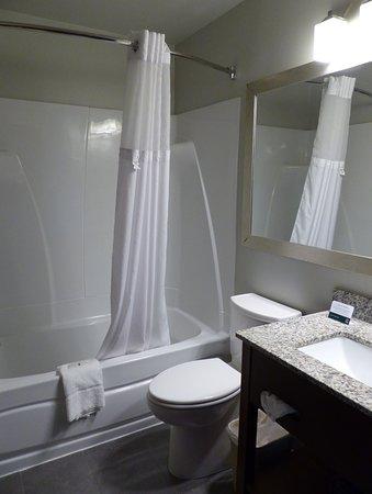 Quality Inn & Suites: Bath -- Quality Inn and Suites, Staunton, VA