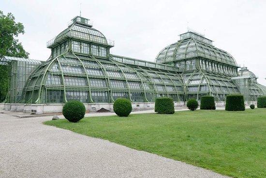 Palmenhaus Schoenbrunn照片
