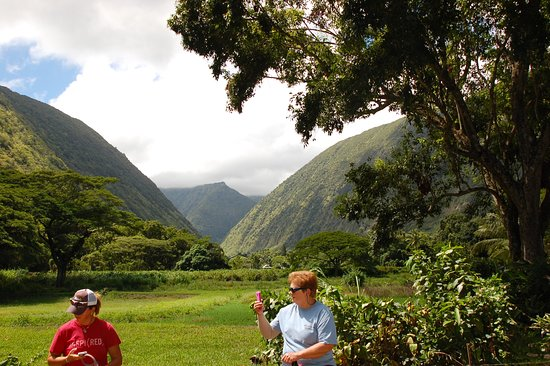Na'alapa Stables - Waipio Valley: View