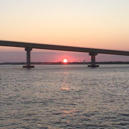 Ocean City Nj Fishing & Cruising Fleet: Great day on the Miss Ocean City