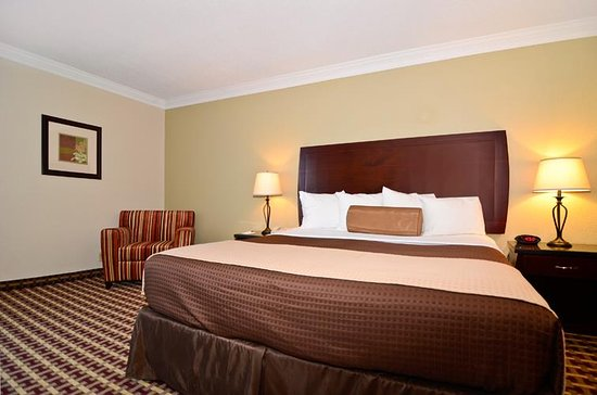 Best Western Hotel & Conference Center Johnson City: Guest Room