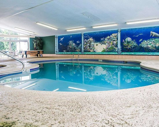 Quality Inn & Suites Conference Center Bellville: Indoor pool