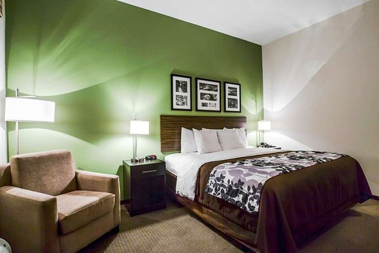 Sleep Inn & Suites Marion - Military Institute: Guest room with sitting area