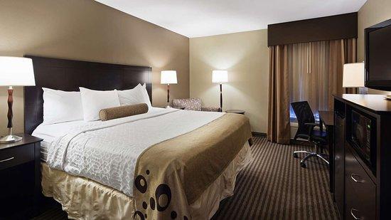Best Western Plus Mishawaka Inn: Guest room