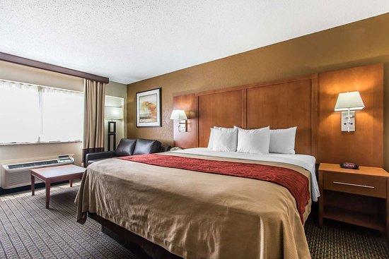 Comfort Inn I-65 At Airport Blvd: Guest room