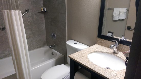 Best Western Plus Dallas Hotel & Conference Center: Bathroom