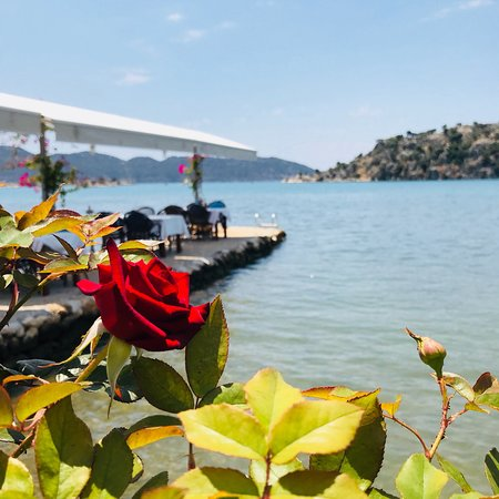 Ucagiz, Turkey: photo9.jpg