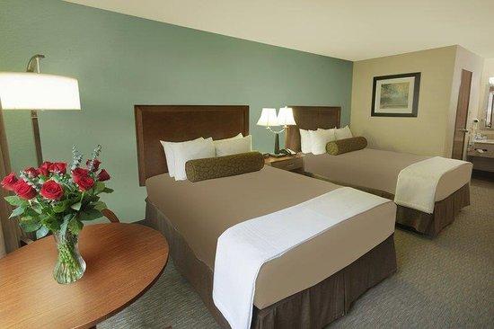 Schertz, Teksas: Two Queen Guest Room