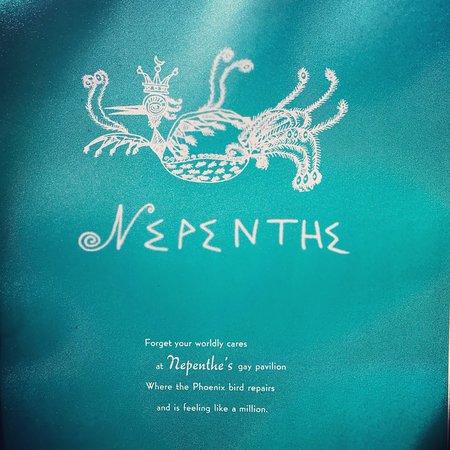 Bilde fra Nepenthe